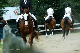 Equestrian Coaching_22